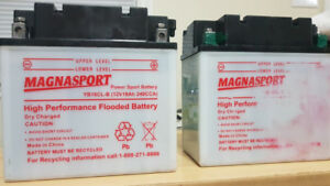 Powersport batteries for sale.