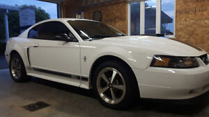 2003 Ford Mustang Mach 1 Autre