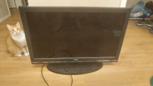 """40"""" LCD TV (Cat not included)"""
