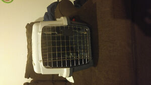 NICE DOG CARRIER FOR SALE