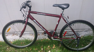 Supercycle Man bike 26""