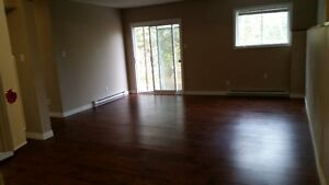 Large Bright 3 bedroom Duplex mins to downtown