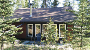 cabin and Forest Therapy! Available for Easter