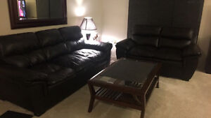 Couch and love seat set - used only for company