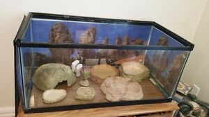 VARIOUS ACCESSORIES FOR BUILDING YOUR SMALL REPTILE A NEW HOME