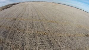 2000.21 Acres Near Qu'Appelle RM #157 Land & Buildings Hwy #1 Regina Regina Area image 5