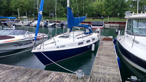 Good Sailboat for a Reasonable Price