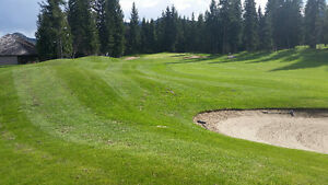 Golf Course Lot In Blind Bay BC