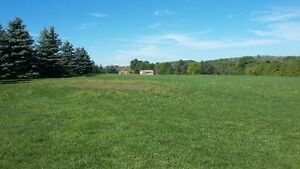 5 acres of land available for rent plus a huge workshop/storage Peterborough Peterborough Area image 2