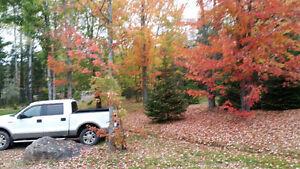 2004 Ford F-150 SuperCrew LARIAT Pickup Truck