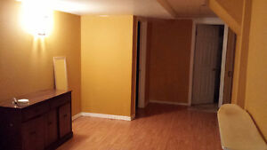 BEAUTIFUL BASEMENT APARTMENT (Markham Rd + Steeles Ave)