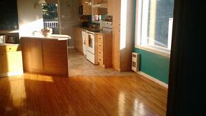 Urgent!! Superbe appartement disponible maintenant Saguenay Saguenay-Lac-Saint-Jean image 1