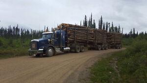 2007 Kenworth T800 Log truck Prince George British Columbia image 5