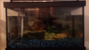 FISH TANK AND EQUIPMENT  FOR SALE 75$