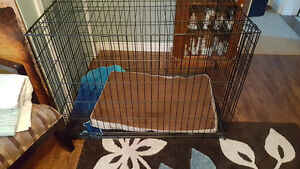 Mint condition large dog crate. Fits full size Rottweiler.