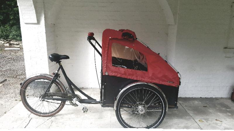 Cristiana Cargo bike- Carries 2 kids | in Cambridge, Cambridgeshire |  Gumtree