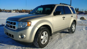 Clean 2011 Ford Escape AWD XLT Gold SUV (with carproof)