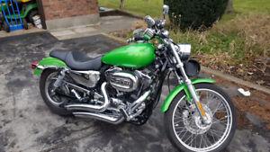 2008 Harley XL 1200 Custom Sportster $8000 o.b.o