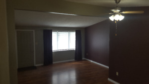 HOUSE FOR RENT IN BIRCH HILLS