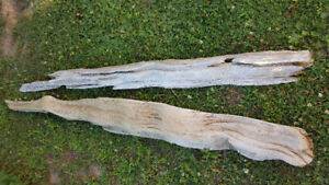 Driftwood for landscaping