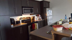 1212 mountain road 1 bedroom apartment