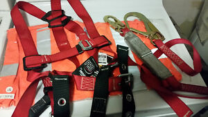 Protecta safety harness with lanyard