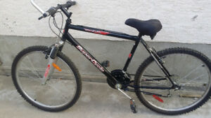 """26 """" Mountain Bike in excellent condition"""