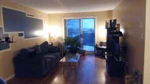 Grand appartement 3 chambres a louer seulement 810$!!!!!