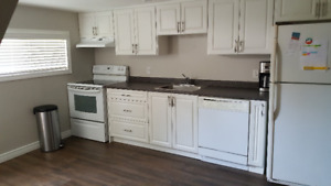 Dundas Apartment for Rent - looking for student