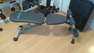 Weight Bench Folds up and down plus sit ups