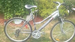 Infinity Huron 21 Spd Frt Fork Suspension Mountain Bike A1 London Ontario image 10