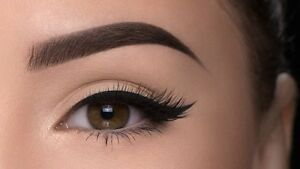Eyelashes extensions $60 full set. Eyebrows $5  Cambridge Kitchener Area image 1