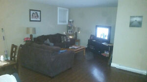 2 bedroom spacious basment apartment in appleton