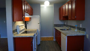 REDUCED: Fully Renovated 2 bed Condo - Ready to move in Edmonton Edmonton Area image 3