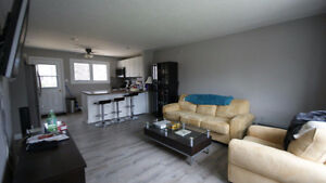 6 Bedroom Student Rental Fully Renovated with 3 Bathrooms London Ontario image 8