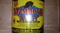 whey protein mammoth 5lb