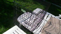 dog cage crate  or best offer  lenght - 30 inches width - 19 inc