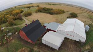 Farmland, House & Buildings - RM #94 Near Kipling, SK. FOR SALE Regina Regina Area image 7