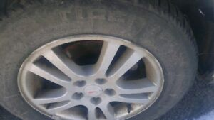 Tiger paw winter tires and aluminum rims