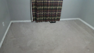 Used carpet about 10 feet by 10 feet for free