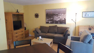 Condo Centre-ville Meublée, Fully Furnished condo for rent !