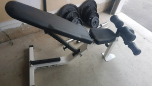 Northern Light heavy duty bench 280lbs olympic weight plates