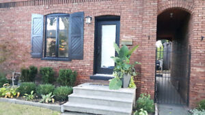 Amazing Walkerville Home for Rent