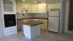 Country lower level apartment for rent