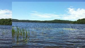 Aubaine!  Beau grand terrain au Lac-des-Commissaires Lac-Saint-Jean Saguenay-Lac-Saint-Jean image 2