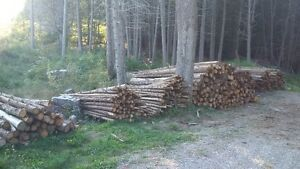 Cedar Posts and Rails for Sale - bark on