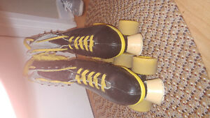 Excellent quality roller skates, plus extra wheels.