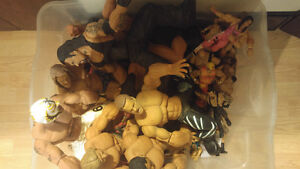 Wrestling collectables