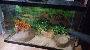 Large snake tank
