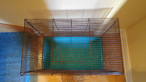 Large cage (for rats, ferrets, hamsters, etc) Peterborough Peterborough Area image 3